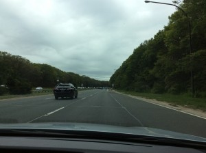It is very green here! This is what the parkways look like.